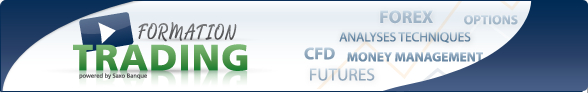 http://www.broker-forex.fr/img/bannieres/formations-saxo-banque.jpg